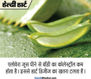 aloe_vera_health_benefits1