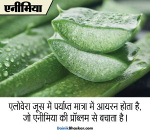 aloe_vera_health_benefits2