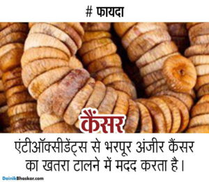 dry_fruits_health_benefit13